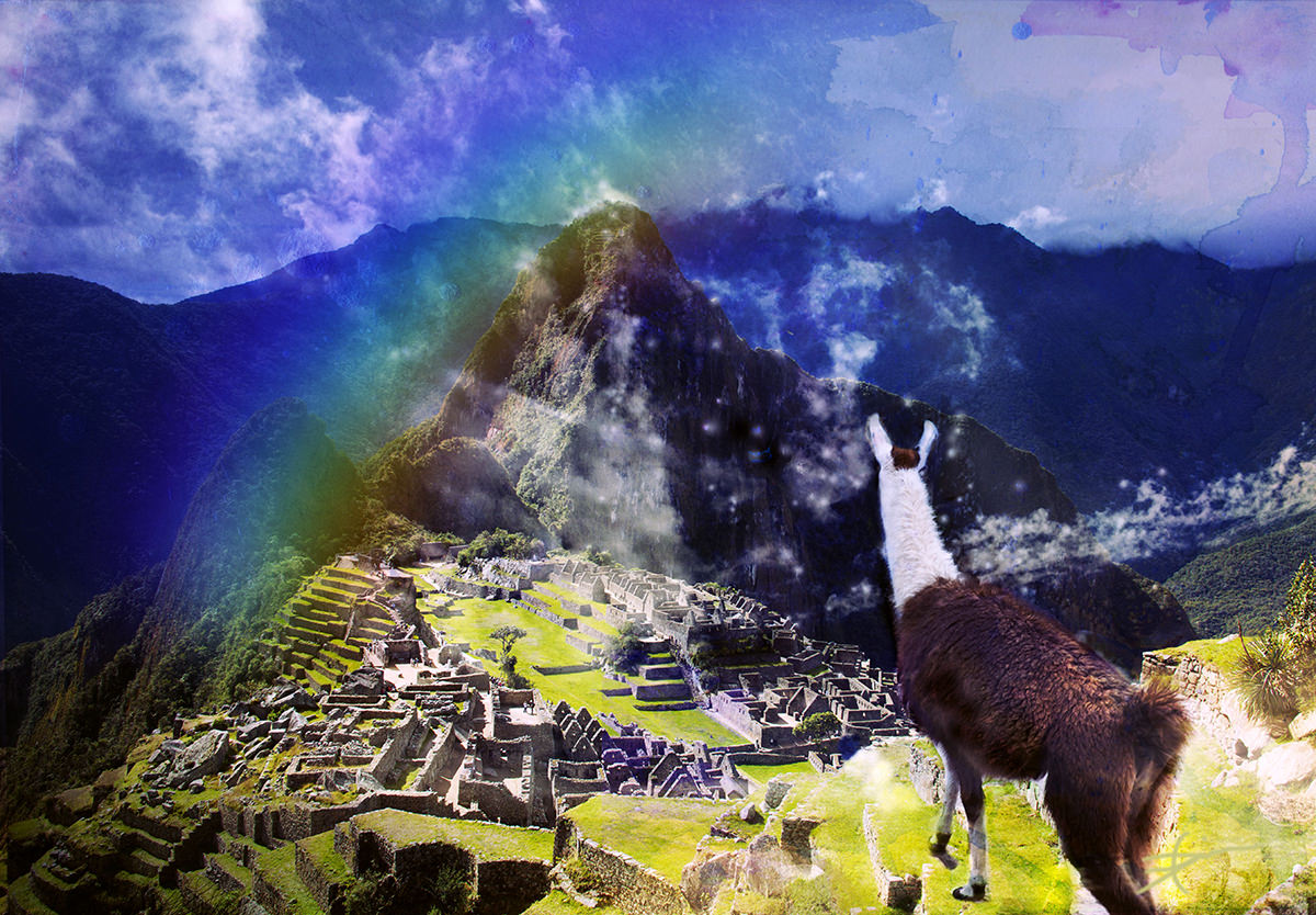Llama Vision